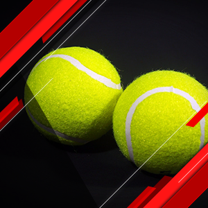 Tenis. ATP World Tour 500. Erste Bank Open 2019 (Vivo)